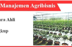 Memahami manajemen agribisnis: sistem, fungsi, aspek, contoh